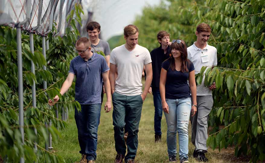 Group of young apprentices walking through a greenhouse for Sainsbury's