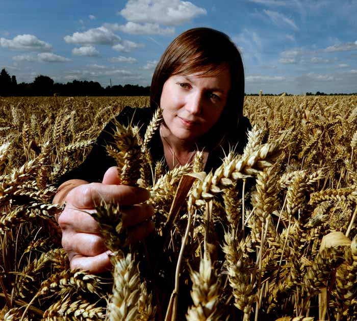 A women in a wheat field, with a head of wheat between her fingers. This represents Sainsbury's commitment to sustainable sourcing.